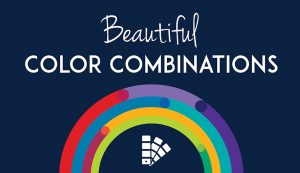 Here's How to Choose a Perfect Color Scheme for your Website